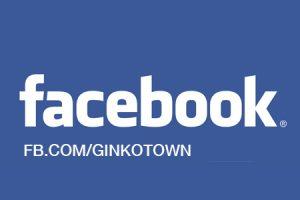 facebook ginkotown
