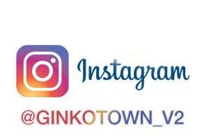 instagram: Ginkotown_v2
